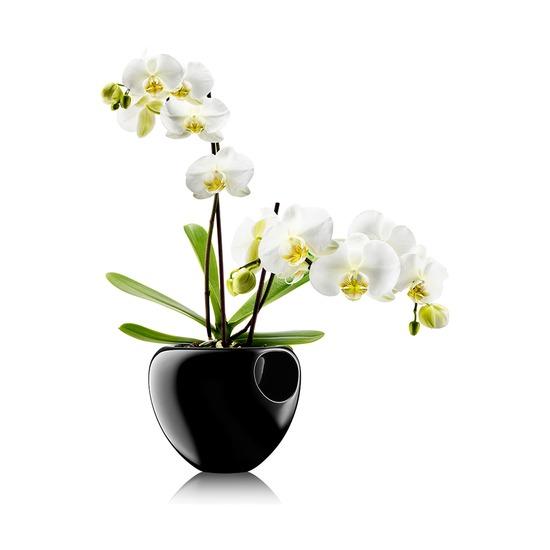Горшок для орхидеи Orchid Pot, черный